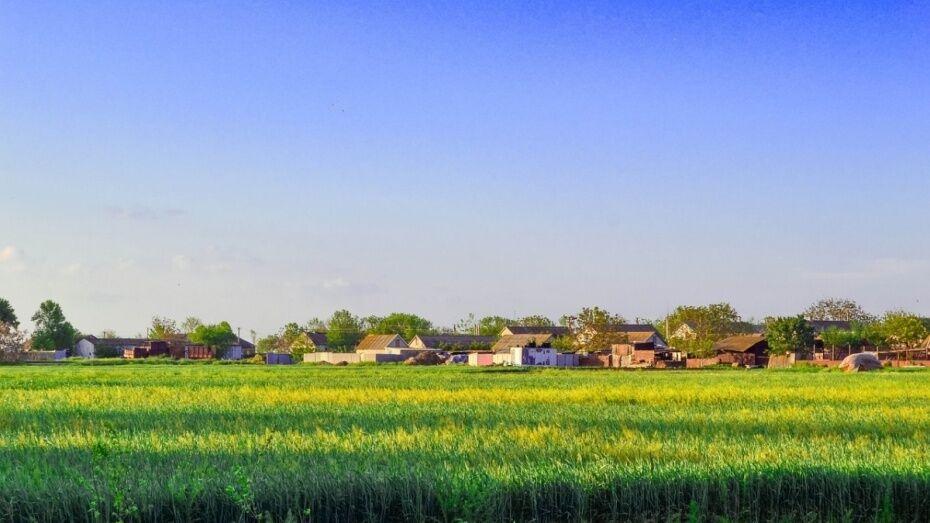 В Воронежской области выбрали самое красивое село