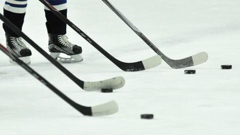 Хоккейная «Россошь» переиграла «Дмитров» в повторном матче