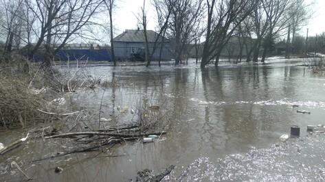 В Репьевском районе талые воды затопили четыре двора