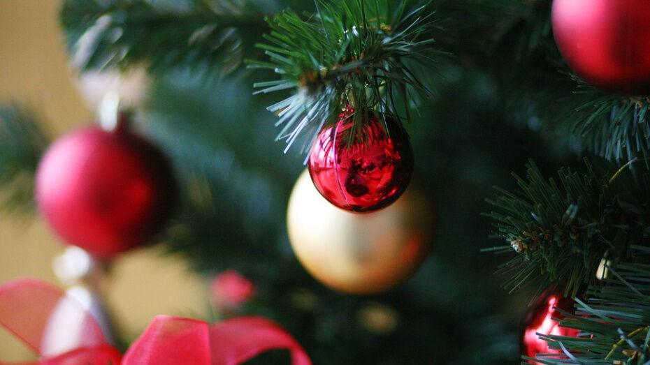 Жителей грибановского села Новомакарово пригласили на «Рождественские встречи»