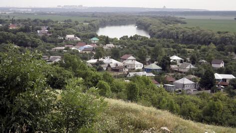 Соцконтракт и агростартап. Как в Воронежской области поддерживают сельчан