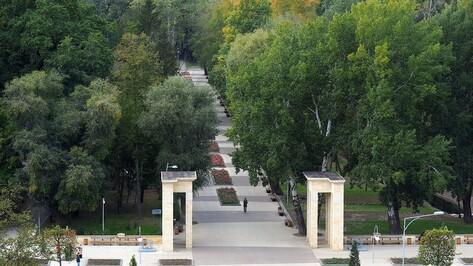 Общественный форум «Действуй!» пройдет в Воронежском центральном парке