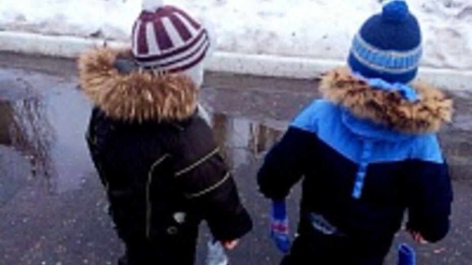 В Воронеже погода опередила календарь более чем на месяц
