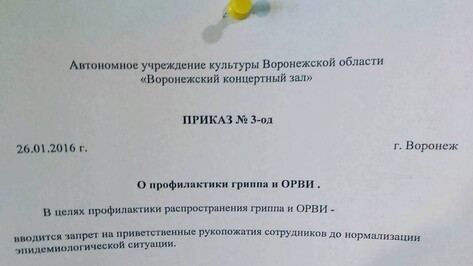 В Воронежском концертном зале из-за гриппа запретили рукопожатия