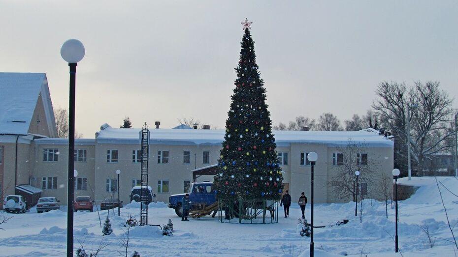 В центральном парке Нижнедевицка впервые установили искусственную ель