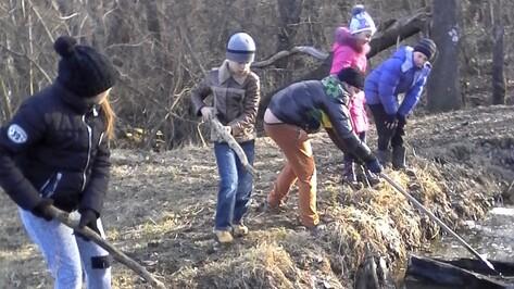 В лискинском селе школьники очистили ручей