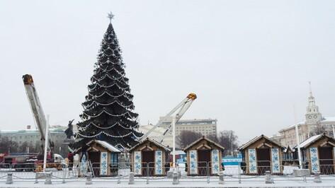 Главную елку Воронежа начнут разбирать 26 января