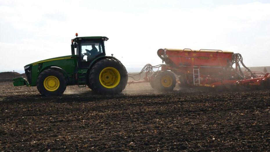 Воронежские ученые предложили инновационную технологию мелиорации кислых почв