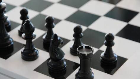В Воронеже откроется гроссмейстерская школа