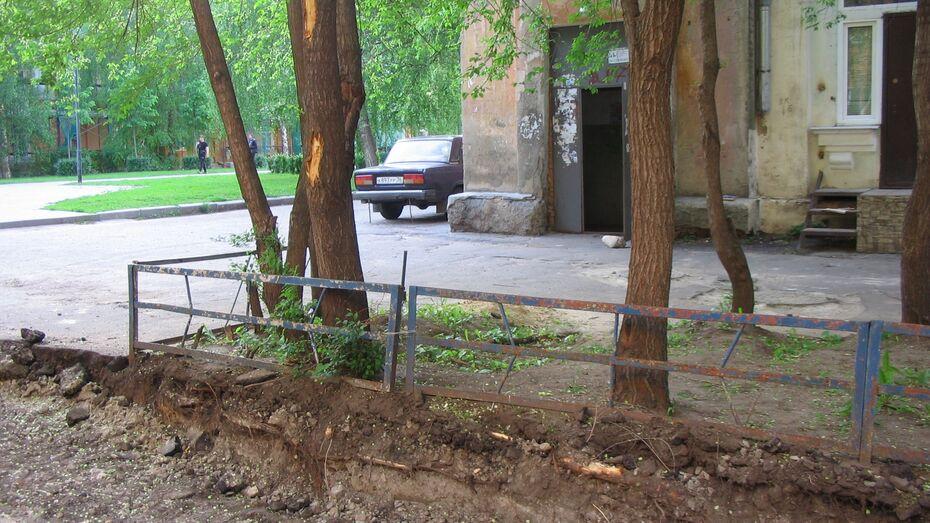 Поврежденные деревья на Депутатской в Воронеже закрасят краской