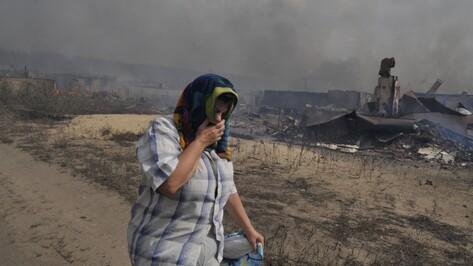 Обзор РИА «Воронеж»: 6 поджогов сухой травы с невинным мотивом и серьезными последствиями