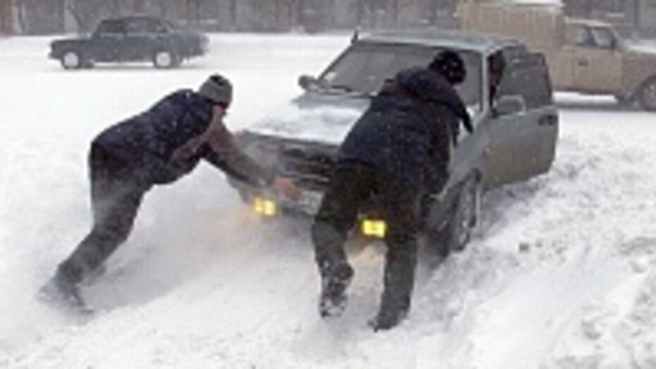 Завтра в Воронежской области ожидается мокрый снег и метель
