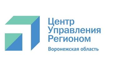 Воронежская область получит свой Центр управления регионом