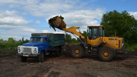 В нижнедевицком селе Синие Липяги ликвидировали 30-летнюю свалку