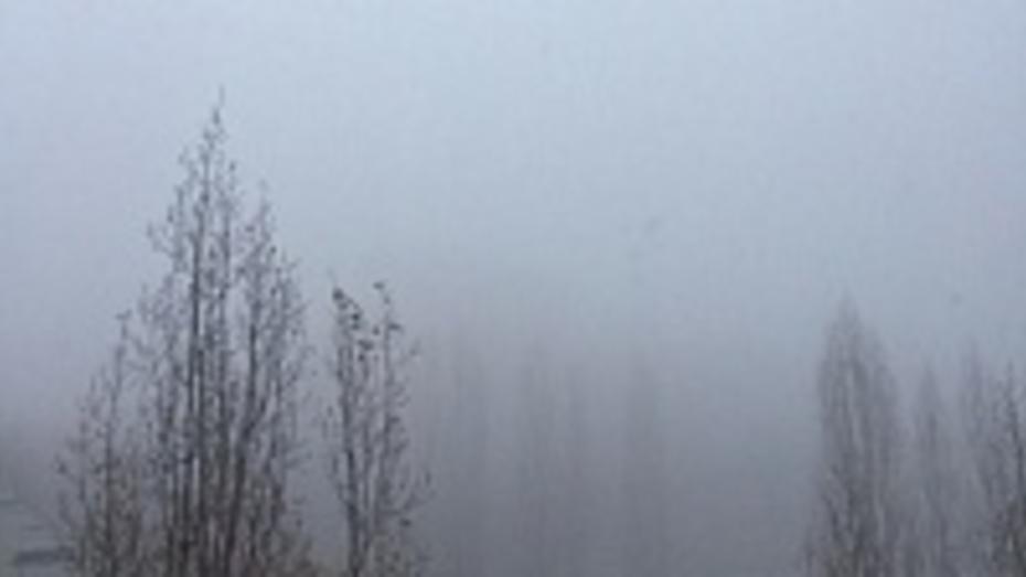 К концу рабочей недели в Воронеже похолодает