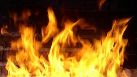 20-летняя жительница Эртильского района сожгла стог соломы, принадлежащий ее крестной матери