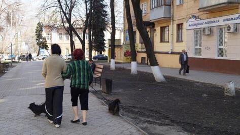 В Воронеже погода побила 28-летний рекорд
