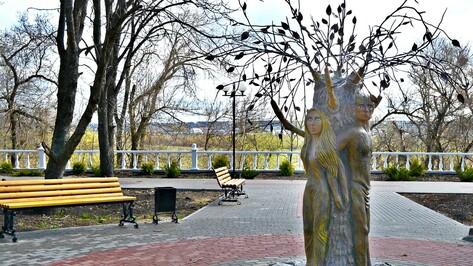 В Семилуках на аллее Молодоженов установили свадебное дерево и скамейку примирения