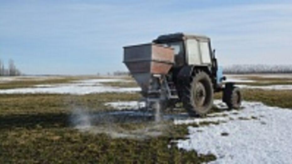 В Бутурлиновском районе начались полевые работы