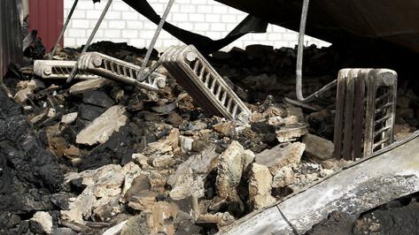 За ночь в пожарах в Воронежской области погибли двое мужчин