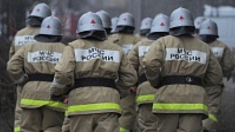 Терновская пенсионерка из-за пожара осталась без крыши над головой