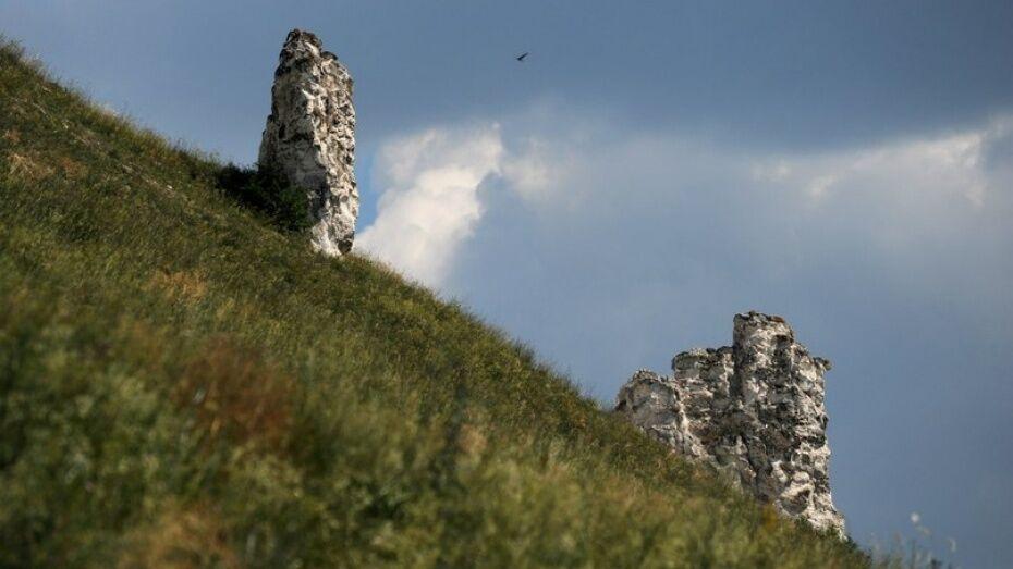 Дивногорье станет особо охраняемой природной территорией Воронежской области