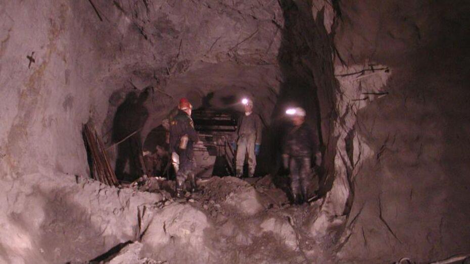 До 2015 года в Новохоперском районе не будут добывать никель - только исследовать месторождение