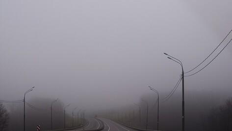 Новая неделя в Воронеже будет туманной и сырой