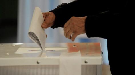 Депутаты гордумы Воронежа утвердили новую схему избирательных округов