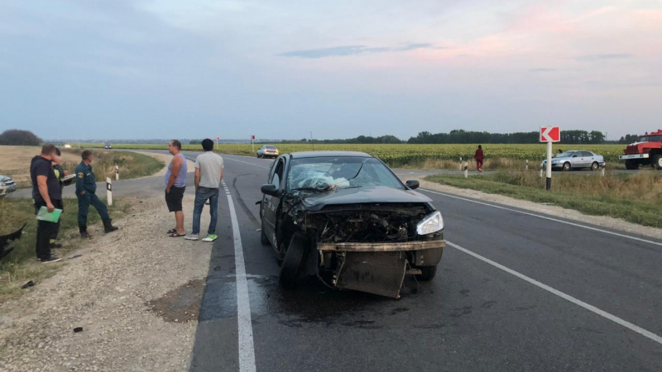В ДТП под Воронежем пострадали 2-месячная девочка и 3 взрослых