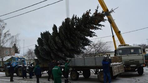 На центральной площади Рамони установили елку
