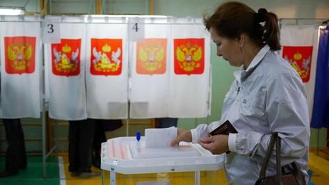 В Воронежской области к 18 часам проголосовали 40,79% избирателей