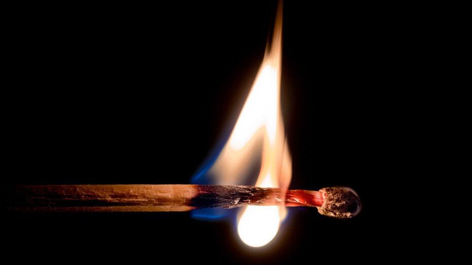 Иномарку воронежца угнали, обобрали и попытались сжечь