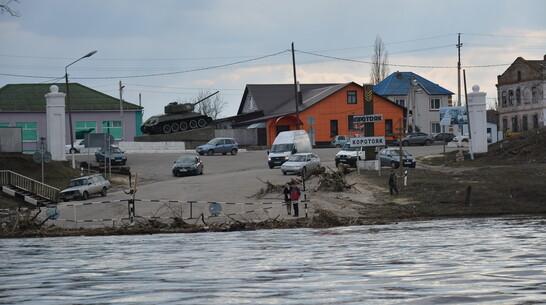 Понтонный мост через Дон развели в острогожском селе Коротояк