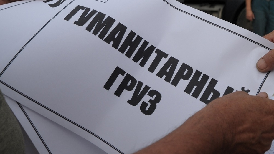 В Воронеже студенты из Ирака собрали гуманитарную помощь сиротам Донбасса