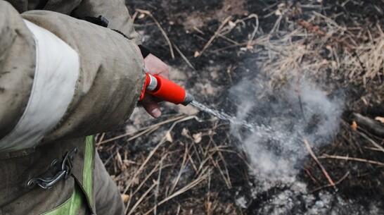 Бушующий больше суток лесной пожар в Борисоглебске Воронежской области локализовали