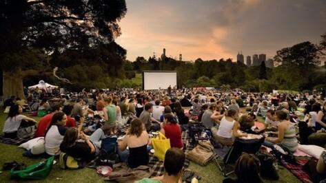 «Кинополяна» предложила воронежцам самим выбрать дату открытия кинотеатра под открытым небом