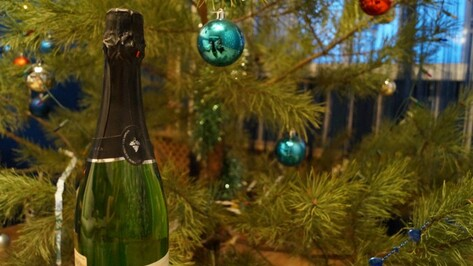 В новогоднюю ночь на пьяную воронежскую пенсионерку напал бомж с ножом