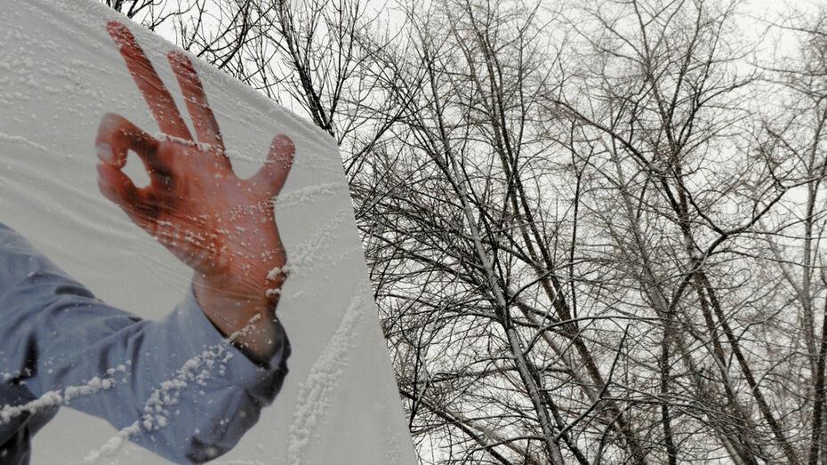 Воронежцев ждет снежная рабочая неделя
