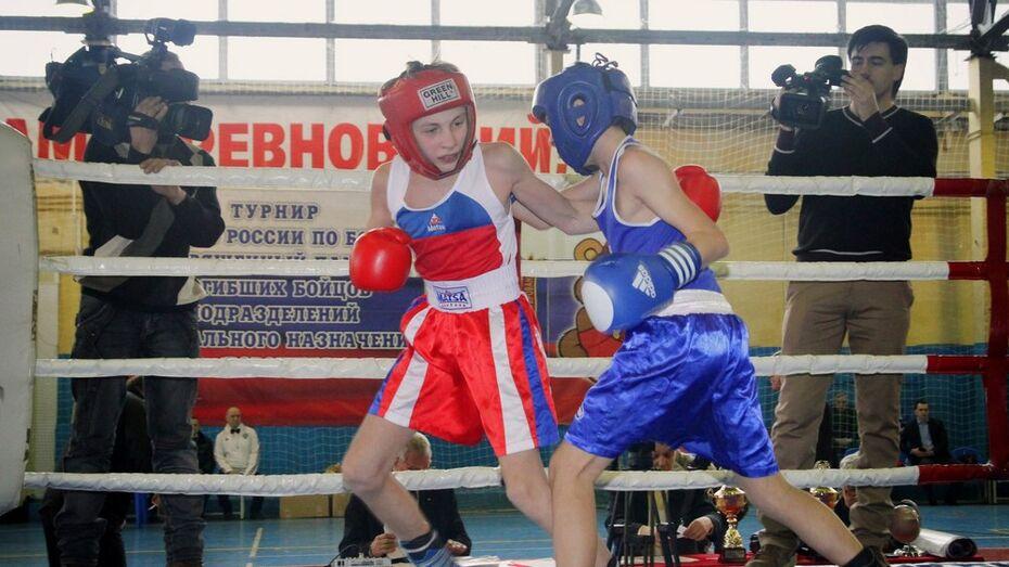 Юные воронежские боксеры выиграли межрегиональный турнир