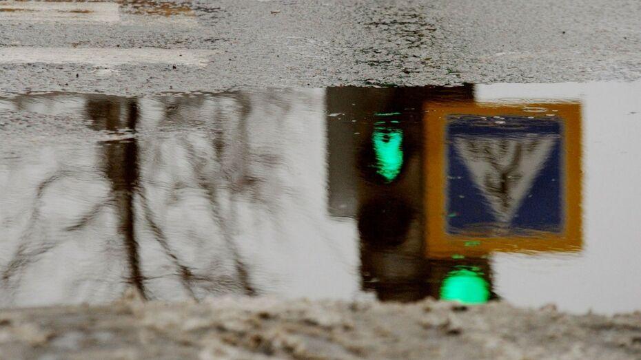 Спасатели предупредили воронежцев о ледяном дожде и гололедице