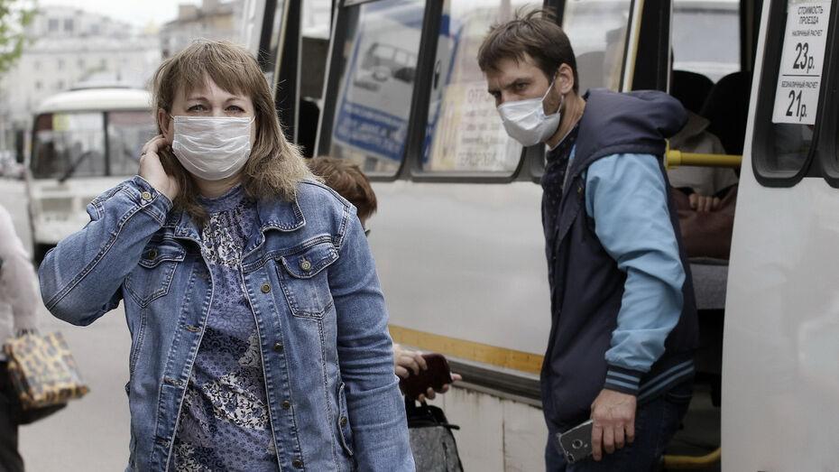 Пассажирам воронежских маршруток напомнят о необходимости носить маски