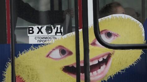 Борта воронежских автобусов избавят от рекламы и нанесут на них логотипы перевозчиков