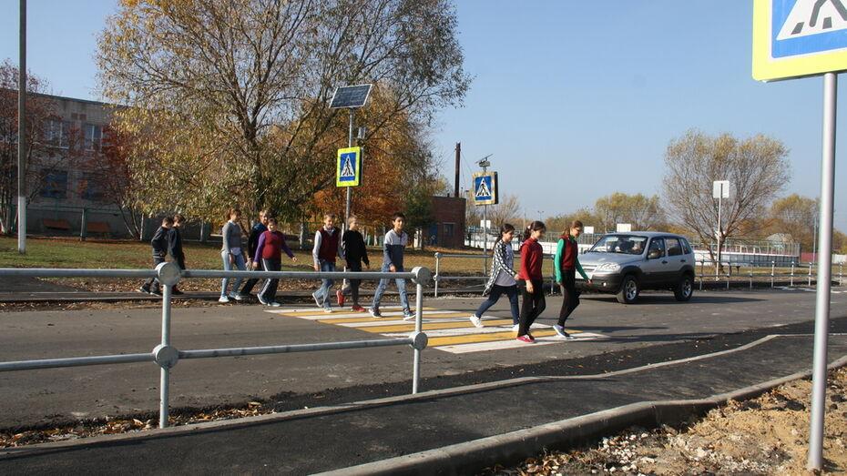 В Каменском районе в 3-х селах у школ оборудовали пешеходные переходы