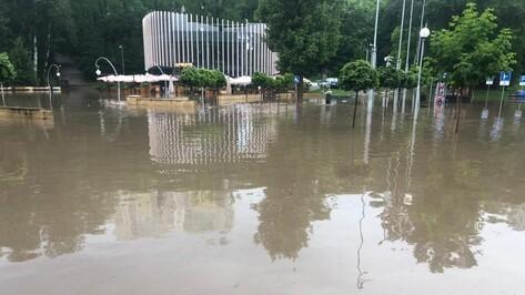 Из-за ливня в Воронеже временно закрыли Центральный парк