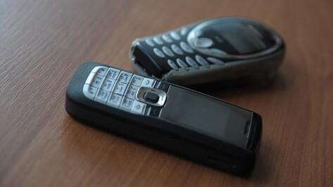 Неизвестный перебросил 5 телефонов в воронежскую колонию