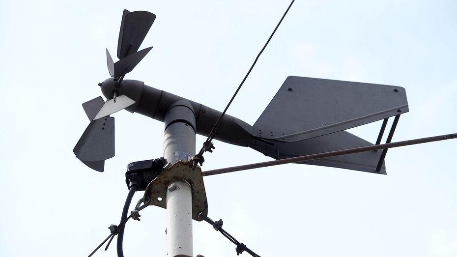 Порывы сильного ветра могут спровоцировать пожары в Воронежской области