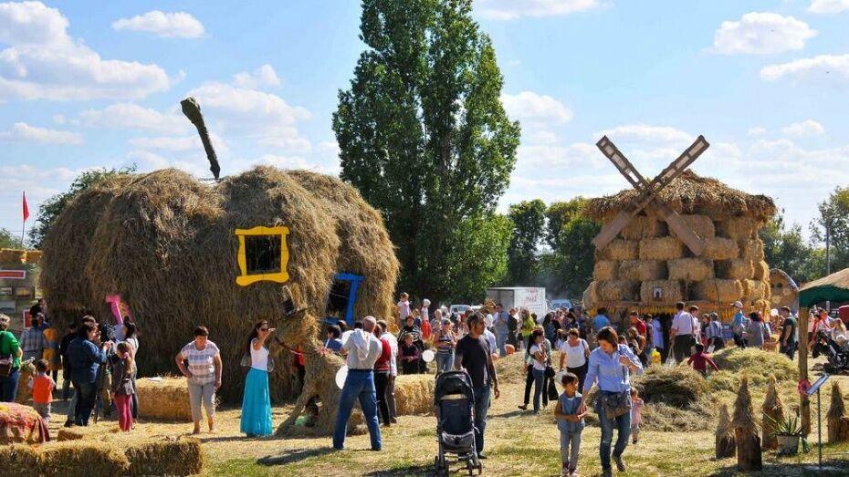 Выставку «Воронеж – город-сад» впервые поделят на тематические дни