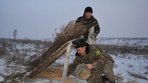 Нижнедевицкие охотники подкормили куропаток