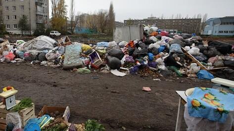 Экологи избавили Воронежскую область от 280 свалок за 1,5 года